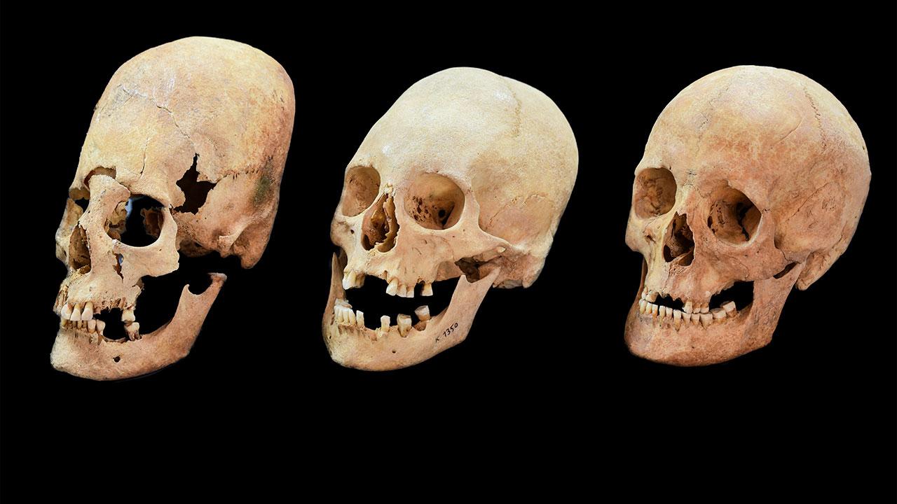 skulls_16x9.jpg